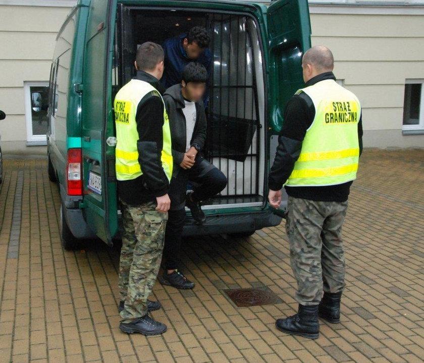 Dwóch Afgańczyków ukryło się w tirze