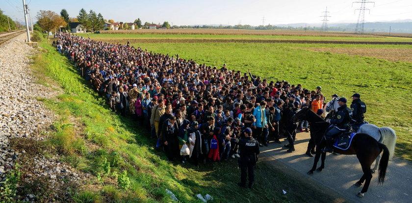 Jak zarobić na uchodźcach? Niemcy już wiedzą
