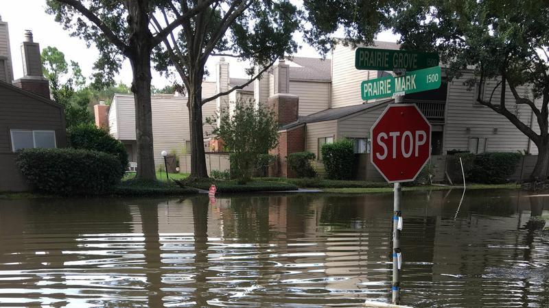 Władze walczą z oszustami wykorzystującymi huragan Harvey