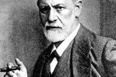 Sigmund Frojd profimedia