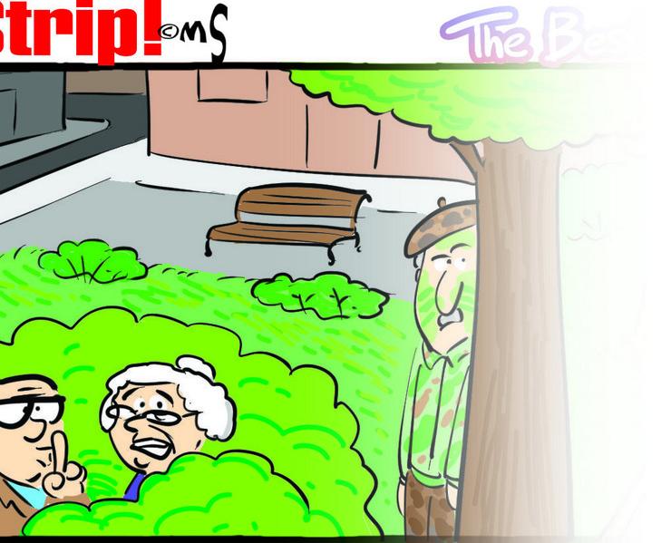 blic strip 11.06 tizer