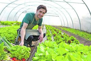 MLADIMA NA SELU 12.600 EVRA Obezbeđen novac za početnike u poljoprivredi