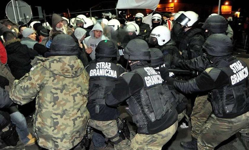 """Wielka bitwa policji z """"mrówkami"""""""