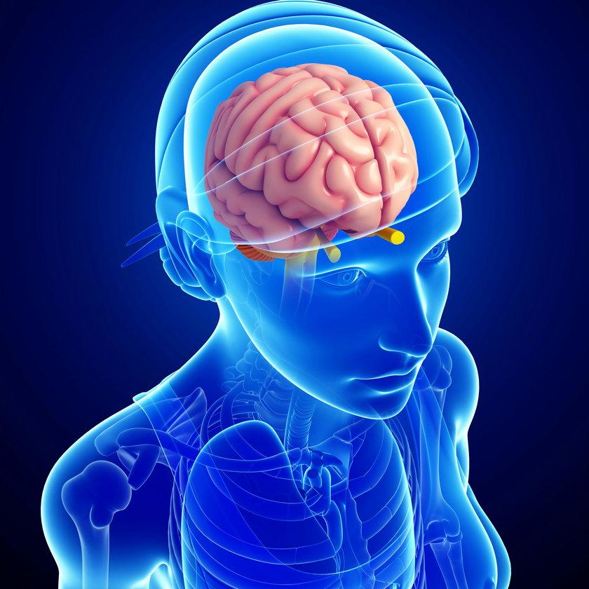 Oddychanie spalinami zmniejsza mózg