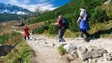 Uwaga! W Tatrach zamykają szlaki. Wszystko przez niedźwiedzicę