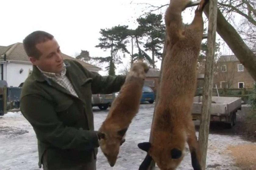 Jak zabił lisa potwora