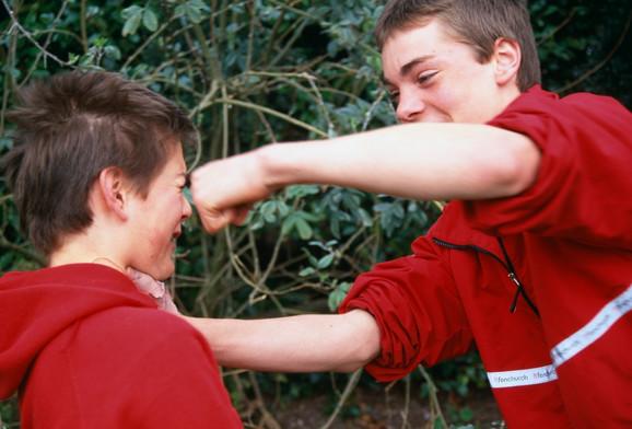 Šta ako je vaše dete nasilnik?