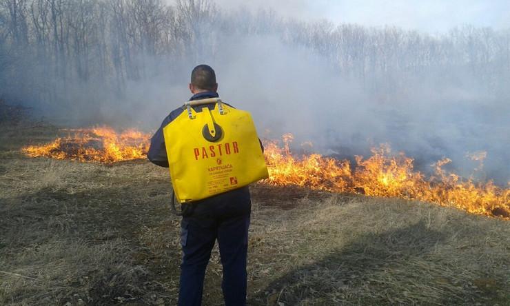 Požar na Fruškoj gori kod Ležimira