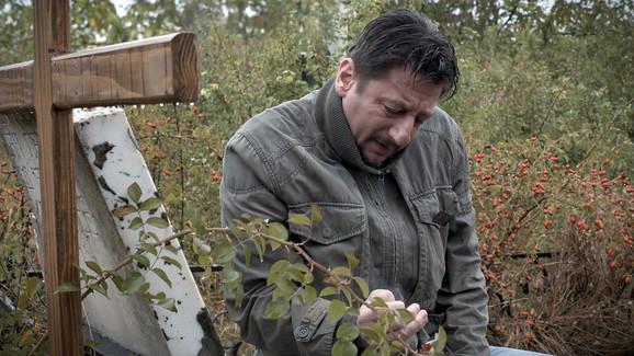 Aleksandar Mihailović u filmu