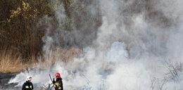 Strażacy znaleźli spalone ciało kobiety