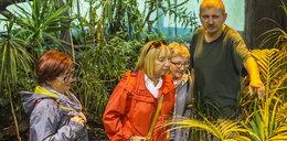 Zoo zbiera rośliny
