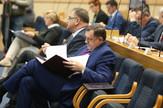 Narodna skupstina RS posebna sednica Milorad Dodik Mladen Ivanic