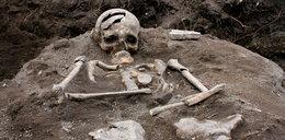 Odkopano groby wampirów. Miały rozbite czaszki i kołki między żebrami