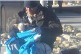 beskućnik čivava