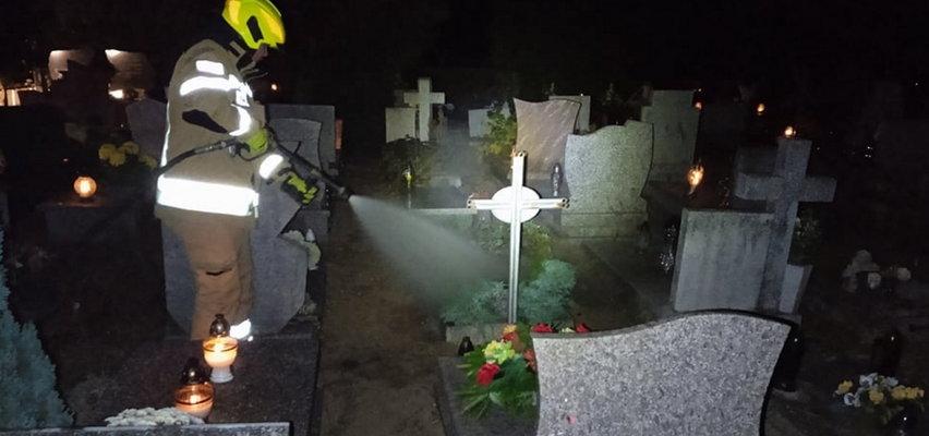Pożar na cmentarzu! Strażacy gasili... grób