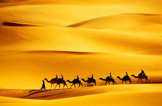 Polacy wracają do Egiptu