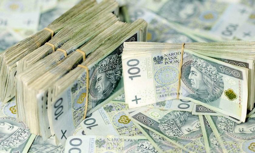 Dania i Polska nie będą ratować firm zarejestrowanych w rajach podatkowych