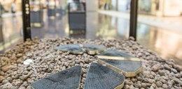 Naszyjniki z tysiącletniego drewna