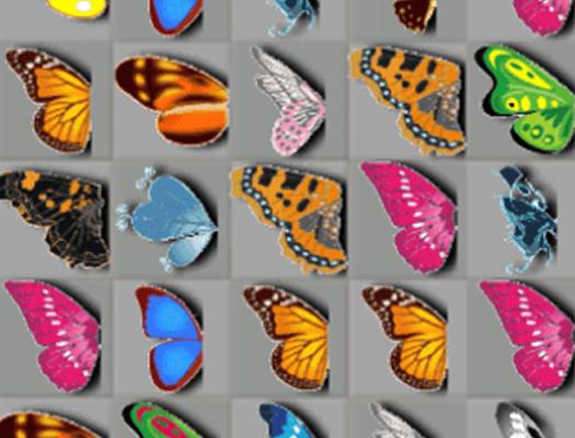 Połącz w pary motyle
