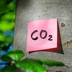 Co to jest ślad węglowy?