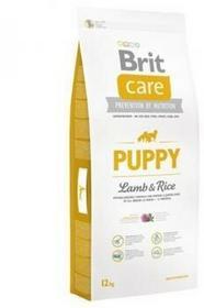 Brit Care Junior Lamb Rice 12 kg