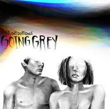 The Going Grey CD) The Front Bottoms