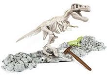 Clementoni Naukowa Zabawa Skamieniałości T-Rex