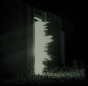 Horizontalism CD) Fink