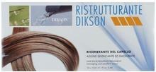 Dikson Kuracja regenerująca do włosów - Dikson Ristrutturante Kuracja regenerująca do włosów - Dikson Ristrutturante