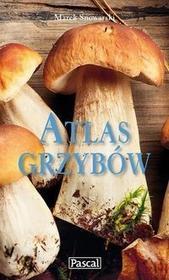Pascal Atlas grzybów - Marek Snowarski