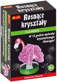Ranok-Creative Rosnące kryształy - Flaming, zastaw zabawna chemia