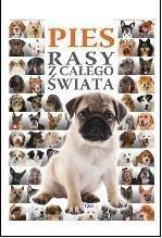 Pies Rasy z całego świata - Fenix