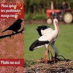 Ptaki na wsi [Digipack] Soliton
