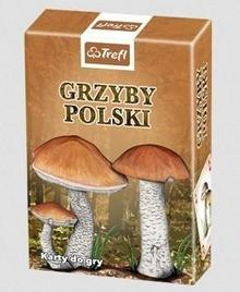 Karty - Przyroda Grzyby Polski TREFL