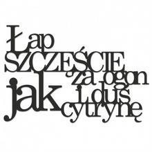 DekoSign Napis na ścianę ŁAP SZCZĘŚCIE ZA OGON... czarny LSZ1-1