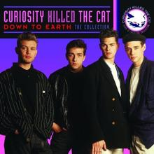 Down To Earth CD) Curiosity Killed The Cat