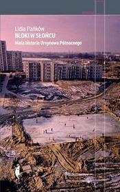 Czarne Bloki w słońcu - Lidia Pańków