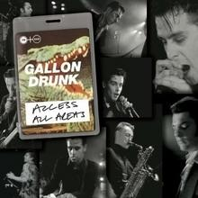 Gallon Drunk Access All Areas CD) Gallon Drunk