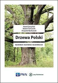 Wydawnictwo Naukowe PWNDrzewa Polski - Paweł Zarzyński, Tomasiak Robert, Krzysztof Borkowski