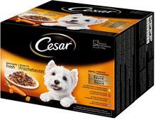 Cesar Feines Favoriten w sosie - 48 x 100 g