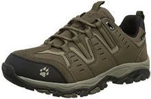 Jack Wolfskin MTN Storm Texapore męskie buty trekkingowe - beżowy - 42 EU B00ZZP33GI