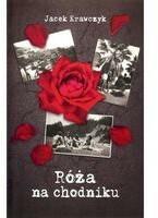 Sorus Róża na chodniku - Jacek Krawczyk