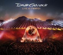 Live At Pompeii CD) David Gilmour