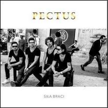 Siła braci CD) Pectus