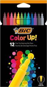 BIC Pisaki 12 kolorów Bc Color Up 950542 pudełko