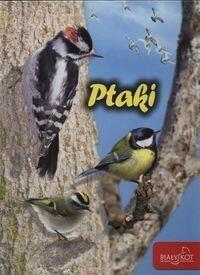Ptaki - Popielarska-Konieczna Marzena