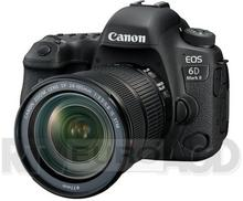 Canon EOS 6D Mark II + 24-105 kit