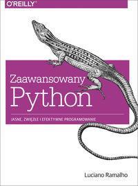 Ramalho Luciano Zaawansowany python / wysyłka w 24h