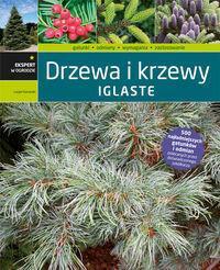 Kurowski Lucjan Drzewa i krzewy iglaste