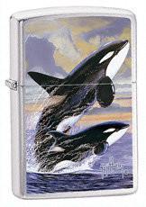 Zippo Zippo, Zapalniczka, Guy Harvey-Killer Whales, Brushed Chrome